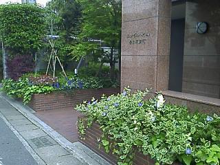 成約御礼! 【エンゼルハイム春日原東町201号】